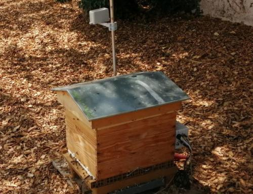 Report: API-Smart hives in the field!